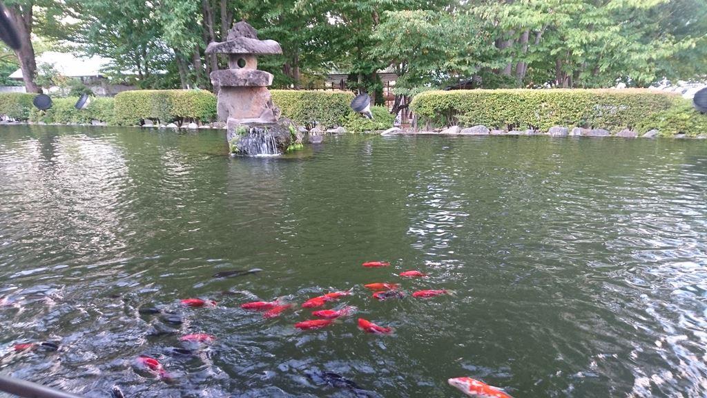 望郷の湯にある池