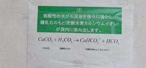 炭酸水素カルシウムイオンの生成