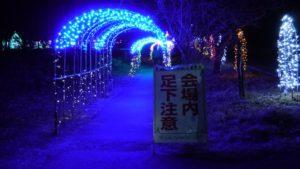 榛名湖イルミネーション 光のトンネル