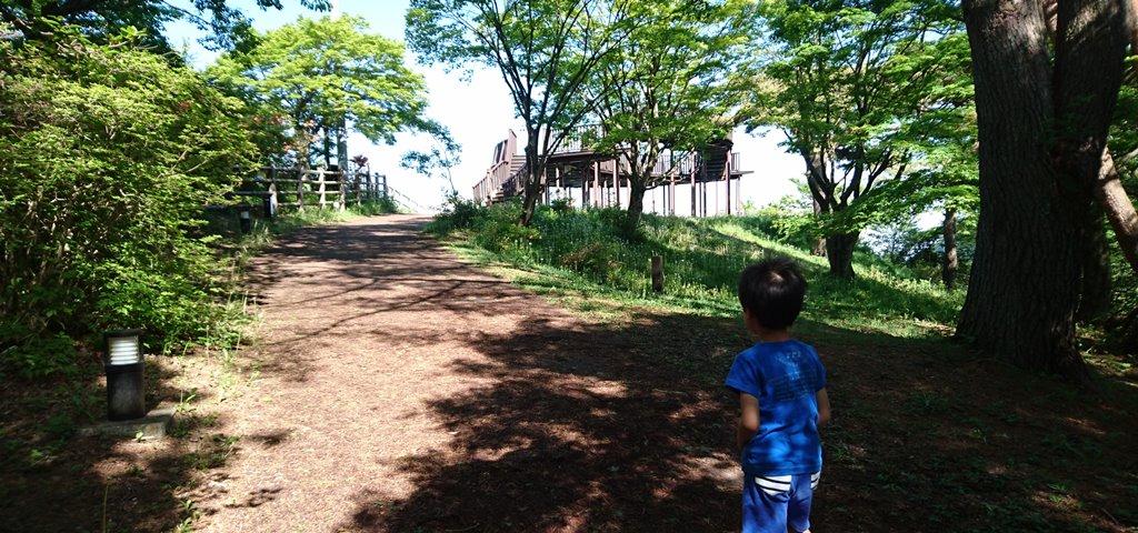 上ノ山公園の道