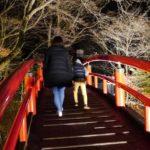 ライトアップ時期の河鹿橋