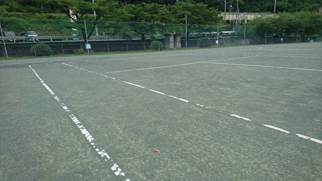 小野上温泉テニスコートのオムニコート