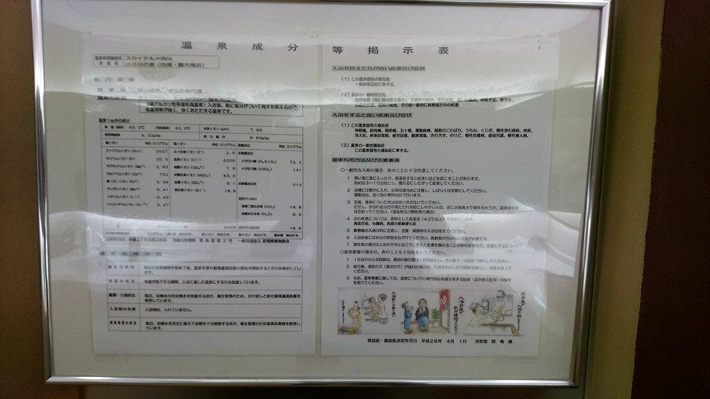 スカイテルメ渋川成分表