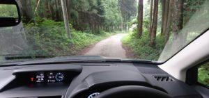 陣平農園への道路